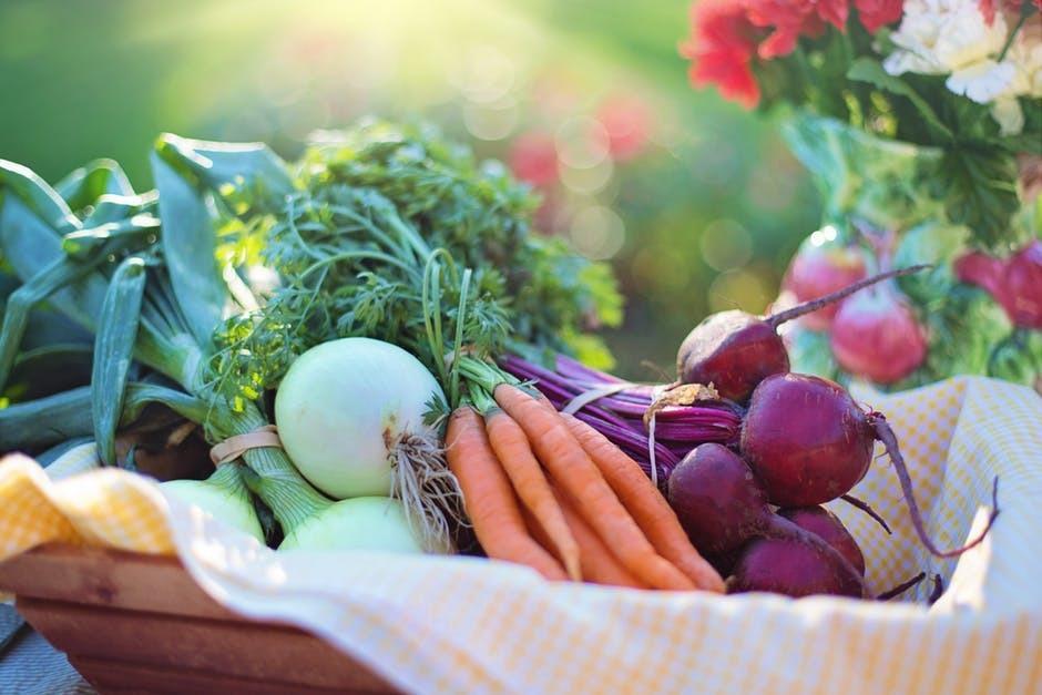 Gårdsbutiker – ett flexibelt levebröd